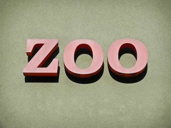 Typo-Überbleibsel: ZOO